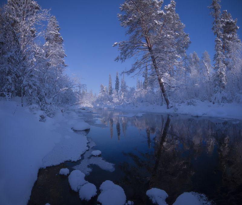 Lotta, Kolskij, day, winter, Зимний лес, Кольский полуостров, Лотта  Frosty Dayphoto preview