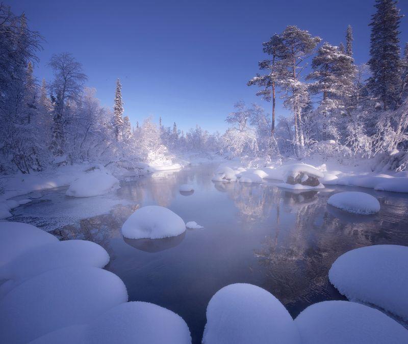 кольский полуостров, кольский, зима, winter, snow, kola peninsula, forest Snowy Forestphoto preview