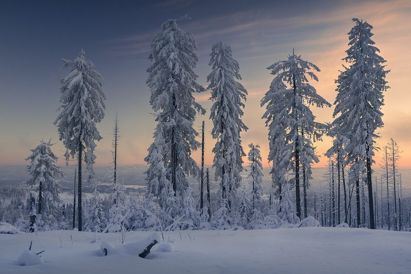 Winter in the Silesian Beskidsphoto preview