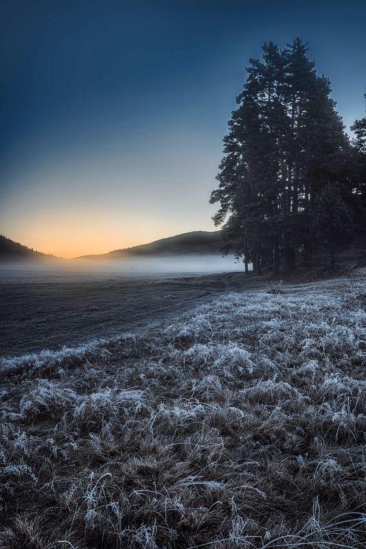 #landscape#nature#winter Warm glow sunrisephoto preview