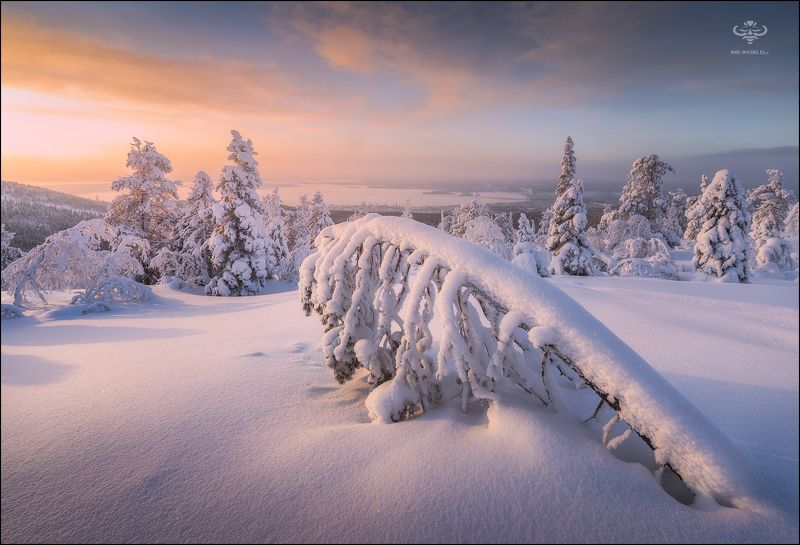 Россия, зима, пейзаж, кольский, закат Зима на Кольском полуостровеphoto preview