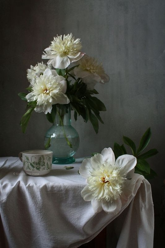 натюрморт, натюрморт с цветами, цветы, пионы, белые пионы Белые пионыphoto preview