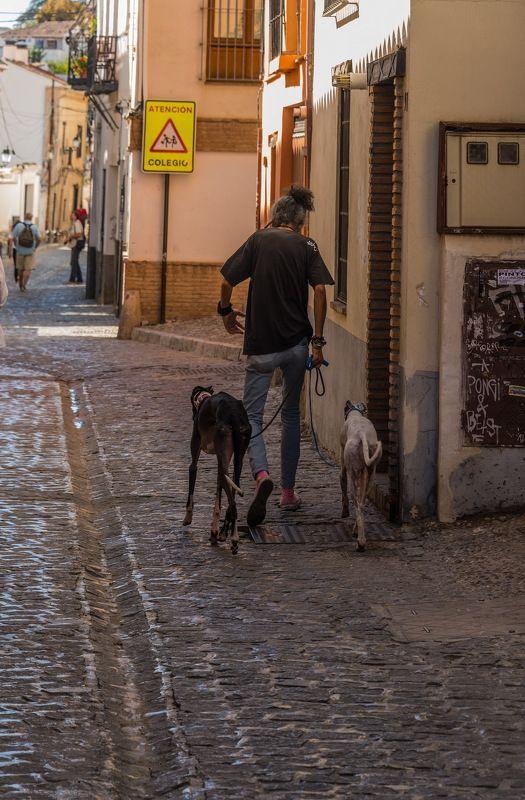 Однажды в Гранаде.photo preview
