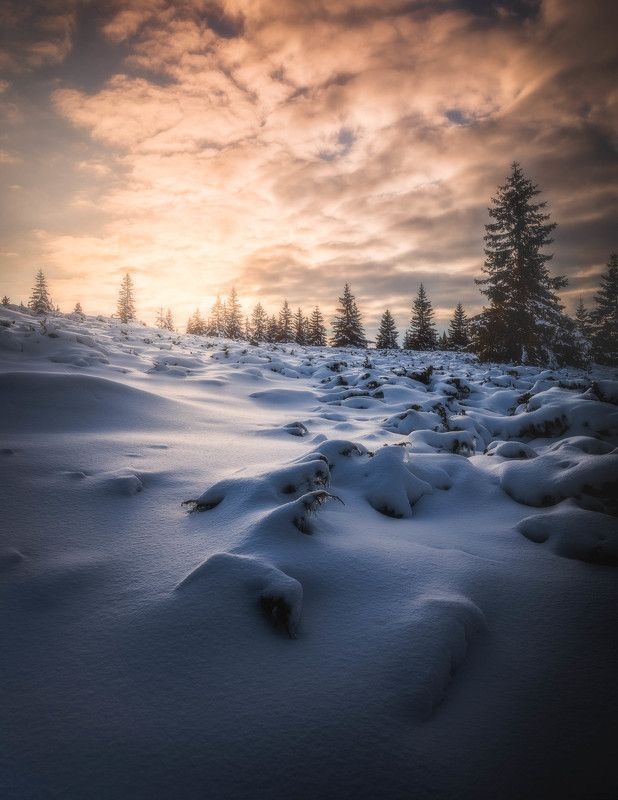 #landscape#nature#winter The day is gonephoto preview