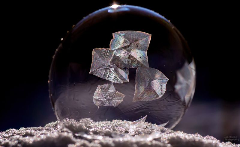 макро, природа, мыльные пузыри, лед, зима, снег, macro, nature, soap bubbles, ice, winter, snow, frozzenbubbles ***photo preview