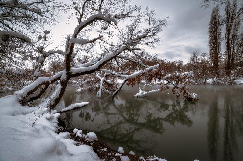 Зимняя прогулкаphoto preview