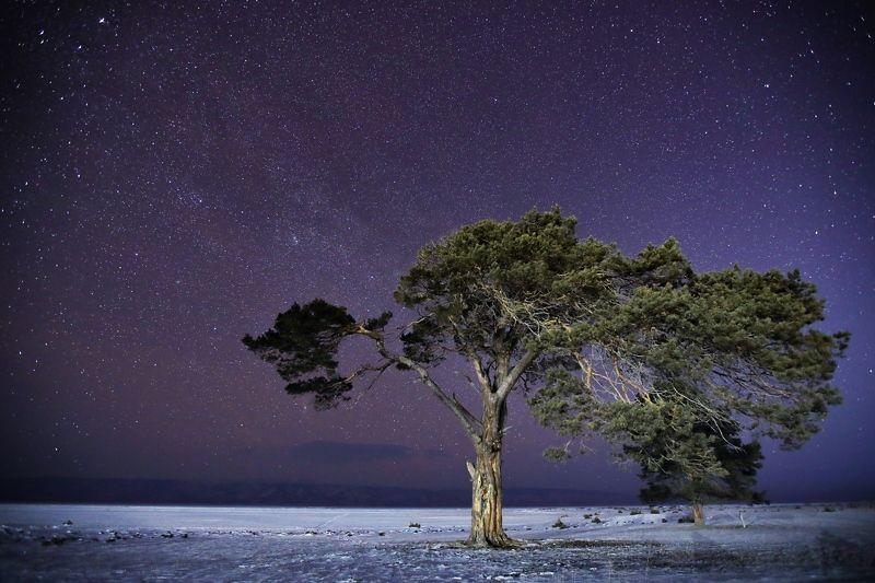 Байкал, Ольхон, звёзды, зима На берегу Ольхонаphoto preview