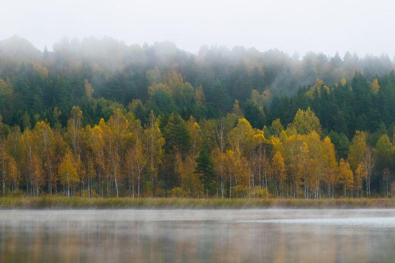 озеро изборск мальская псков природа туман вода осень оз.Мальскоеphoto preview