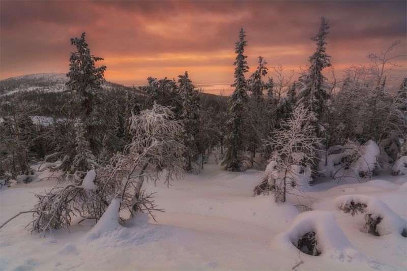 природа, пейзаж, север, кольский, панорама, природа россии, дикая природа, закат, свет, облака, вечер, лес, зима Сумеркиphoto preview