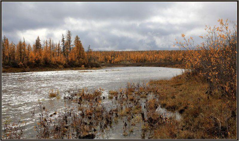 Северная осеньphoto preview