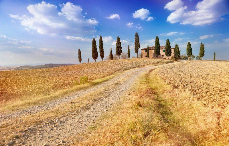 Вила, Дорога, Италия, Кипарис, Небо, Облака, Пейзаж, Поле, Природа, Тоскана Золотая виллаphoto preview