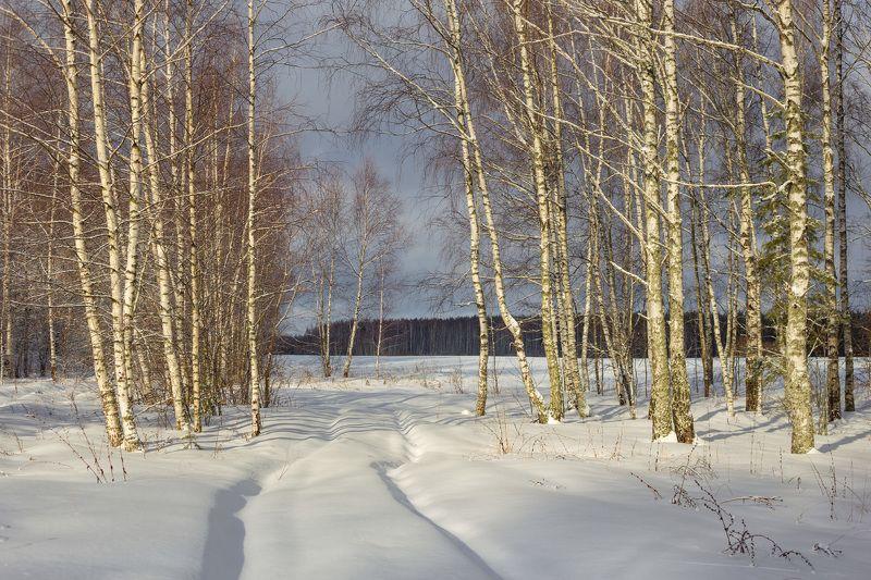 февраль  мороз опушка нагуево Близ деревни Нагуевоphoto preview