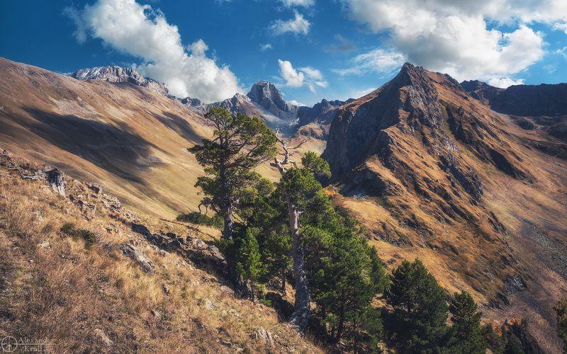 На склонах Загеданского хребта...photo preview