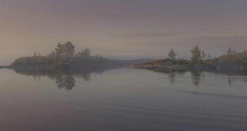 ладога. Туманное утро.photo preview