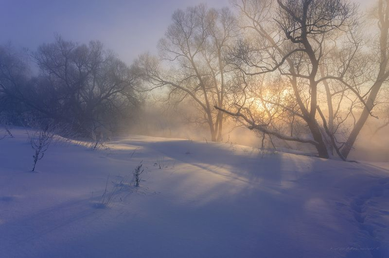 природа, река, пейзаж, зима, утро, московская область, истра, landscape, nature Мороз и солнце...photo preview