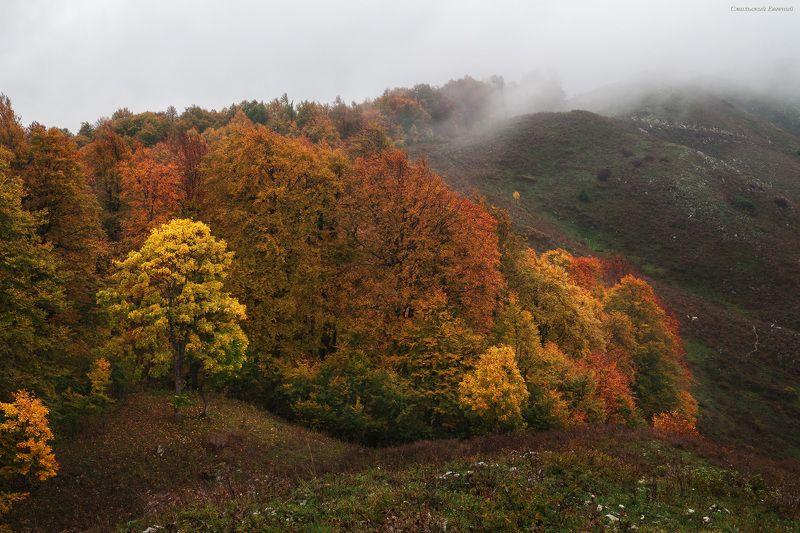 абхазия, горы, осень, сентябрь, облака Касаясь облаковphoto preview