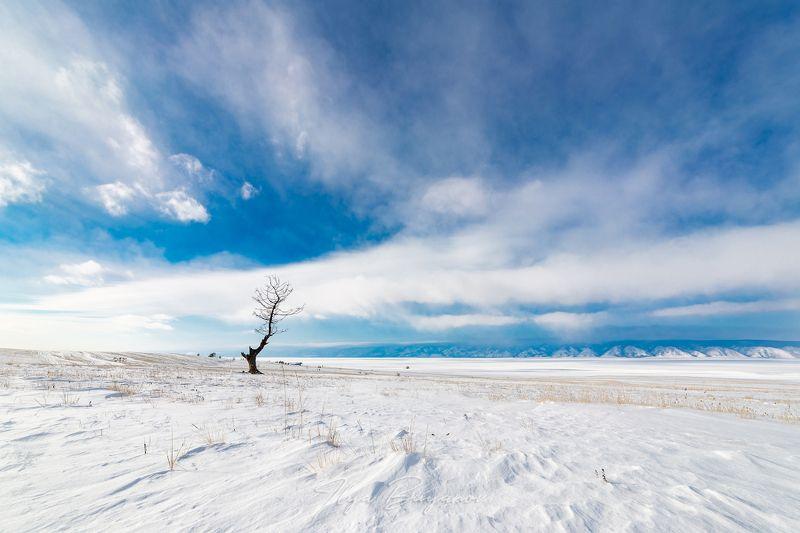 фототур, саяны, байкал, тажераны, тажеранская степь Ольхонский минимализмphoto preview
