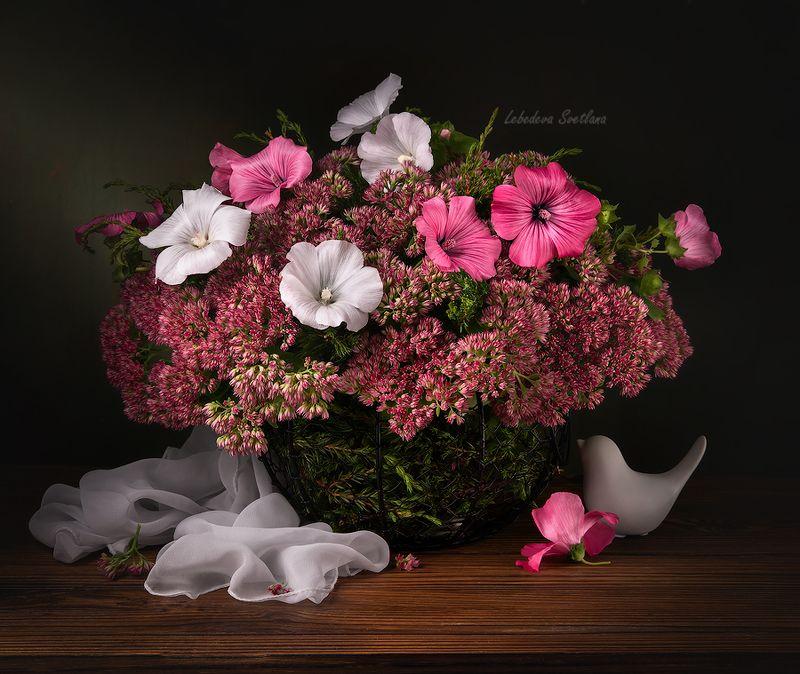цветы,букет,мальва С лаватеройphoto preview
