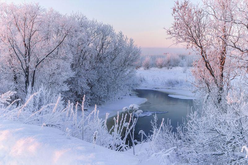 Розовое утро. Зимняя зарисовка.photo preview