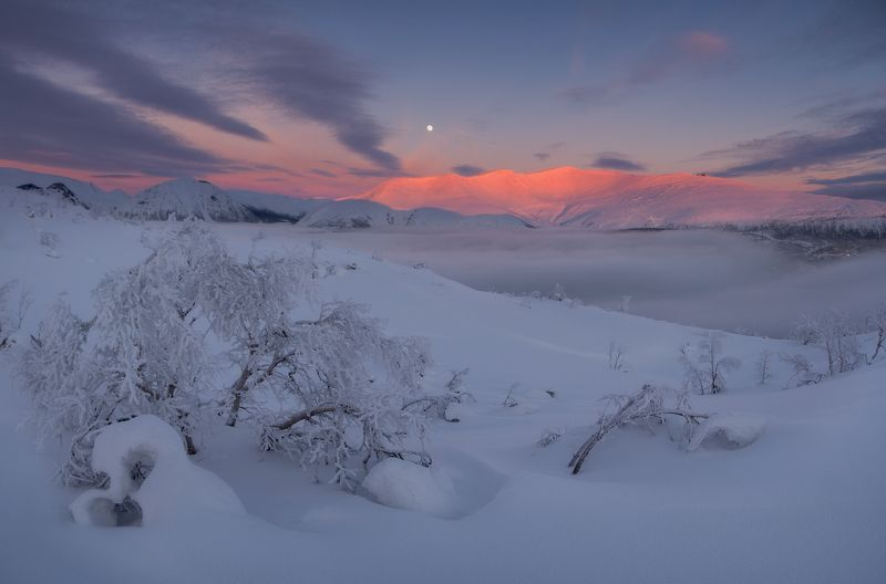 пейзаж,хибины,кольский,север,россия,хибины,закат Айкуайвенчорр на закатеphoto preview