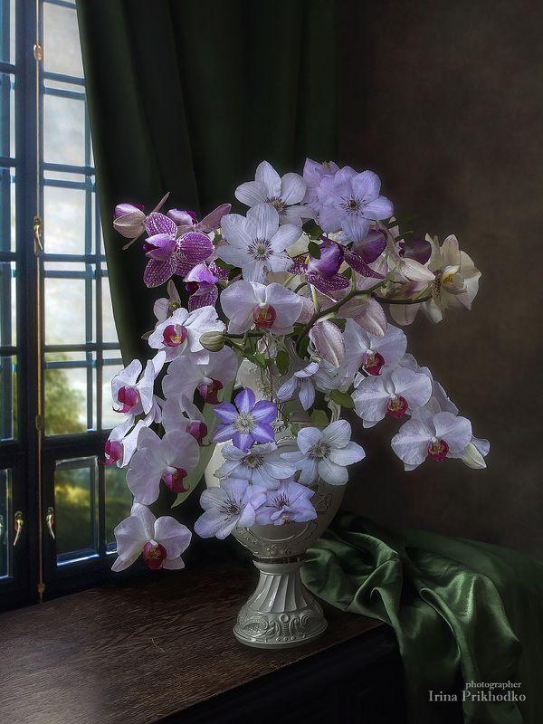 натюрморт, цветы, букеты, орхидеи, клематис, художественное фото Фантазийно- экзотический букетphoto preview