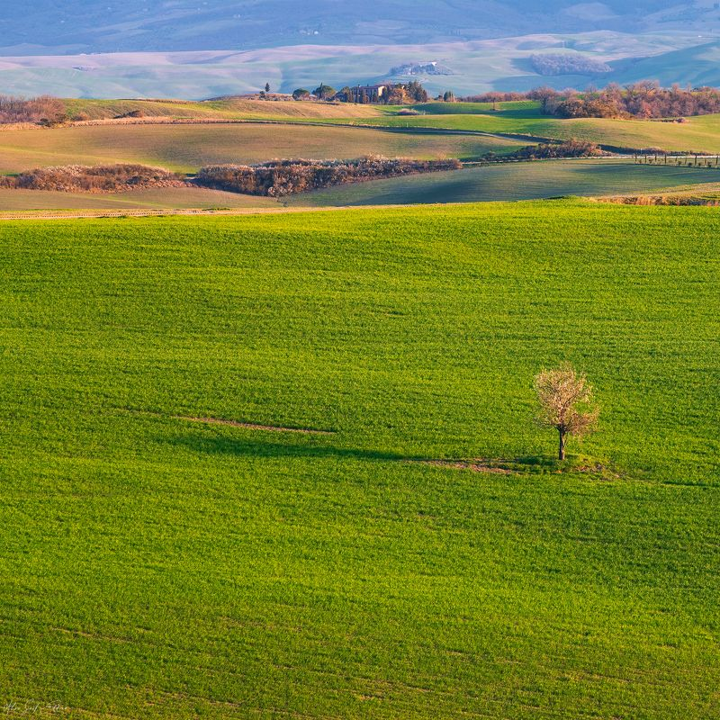 landscape, green, tuscany, italia photo preview