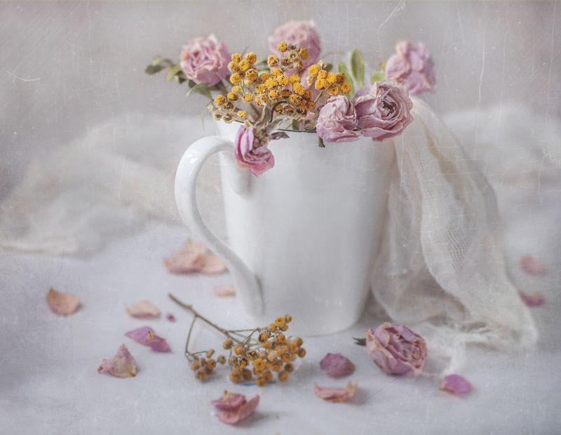 засохшие,цветы,розы,увядание,время,кружка,светлое,белый,пижма,растения,ткань Их время ушло !photo preview