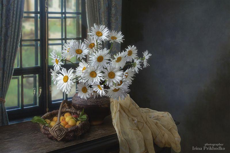 натюрморт, лето, цветы, фрукты, ромашки, букеты, абрикосы, художественное фото Воспоминания о летеphoto preview