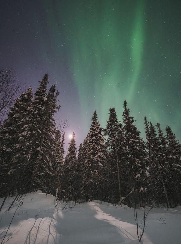 печора,коми,полярное сияние Ночной светphoto preview