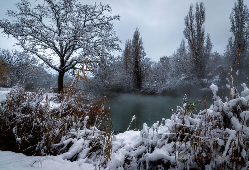 Последний день зимыphoto preview