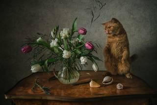 Кот и весенний букет