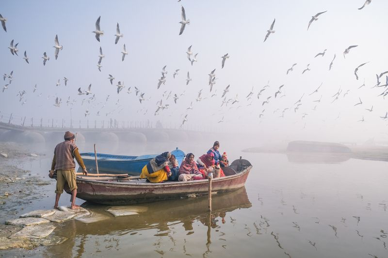 fly, birds, boats Life is a journey not a destination.photo preview