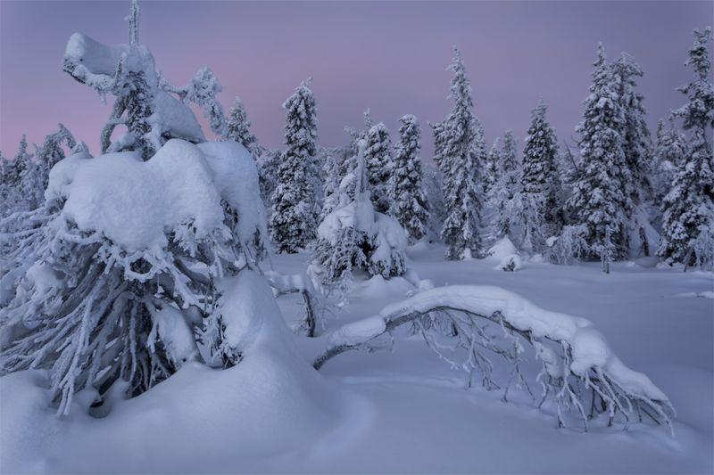 природа, пейзаж, север, кольский, природа россии, дикая природа, закат, свет, облака, вечер, зима *photo preview