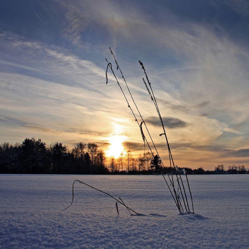 вечер, закат, зима, снег Вечерняя...photo preview