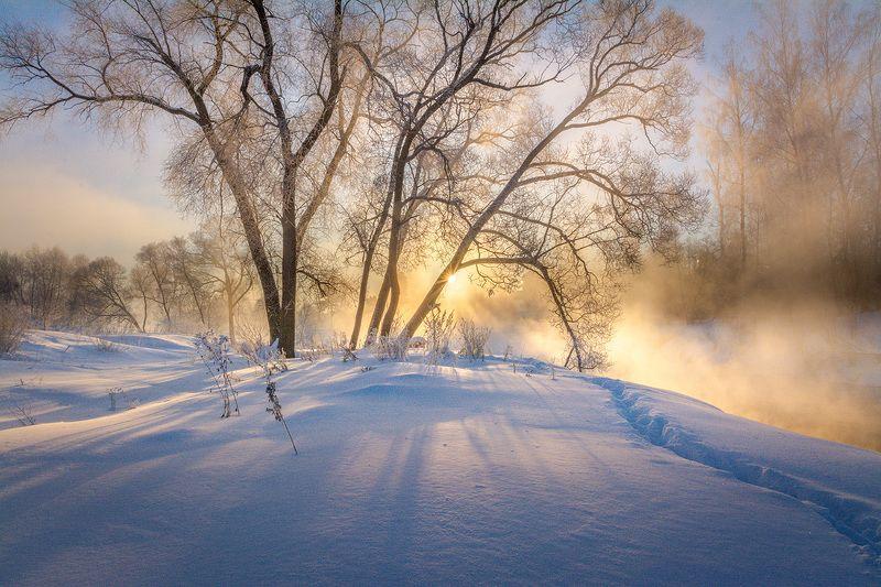 Зимний пейзаж.photo preview
