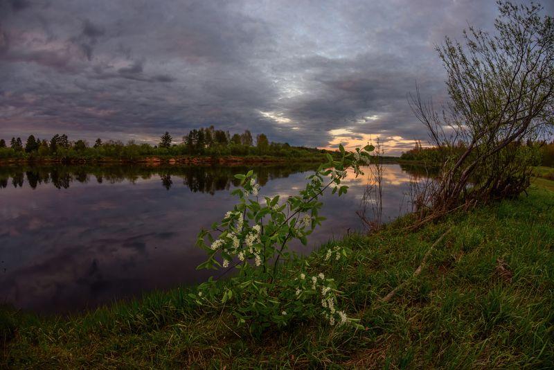 про весну, багровый закат и черемухуphoto preview