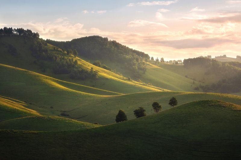 алтайский край, алтай, предгорья, холмы, летний пейзаж, бирюксинский перевал, алтайский район, семинский хребет, утренние краски, утро, линии Паломникиphoto preview
