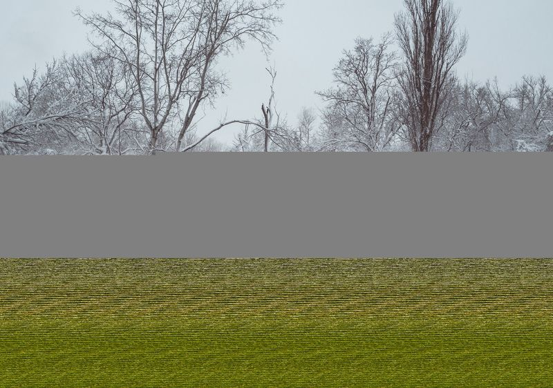 зима, снег, кубань, краснодар, солнечный остров, байдарочники, зимняя сказка, анатолий щербак Январская Кубань.photo preview
