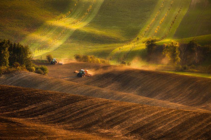 Moravian fieldsphoto preview