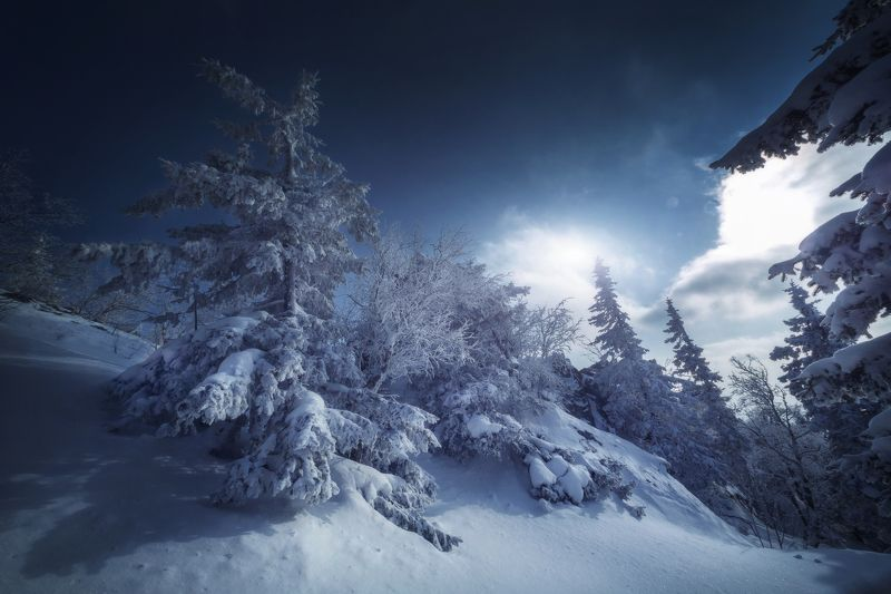 озеро, горы, лес, природа, закат, рассвет, красота, приключения, путешествие Волшебные сны Таганаяphoto preview
