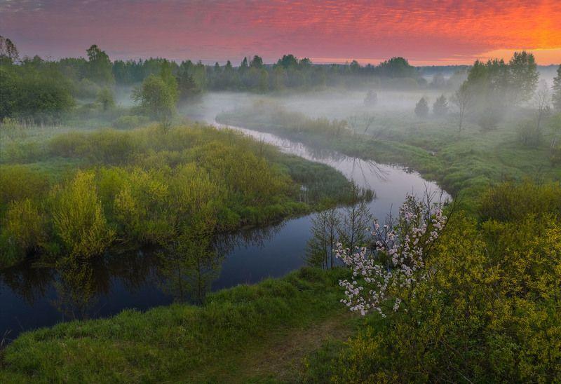 Фототуры с Владимиром Рябковым, #topnature #russpasibo #magic_shots #lovelyRussia #sunset_vision #exclusive_sky  #exclusive_shots #loves_russia2 #photoarena_nature #nature_sultans #nature_perfection #rsa_sky #rsa_sunset #photorussia #rsa_naturepics #sunse Ранним утром на Узоле. photo preview