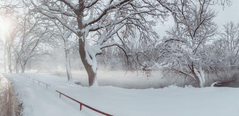 зима, снег, кубань, краснодар, солнечный остров, байдарочники, зимняя сказка, анатолий щербак Хроники Екатеринодарской зимы.photo preview