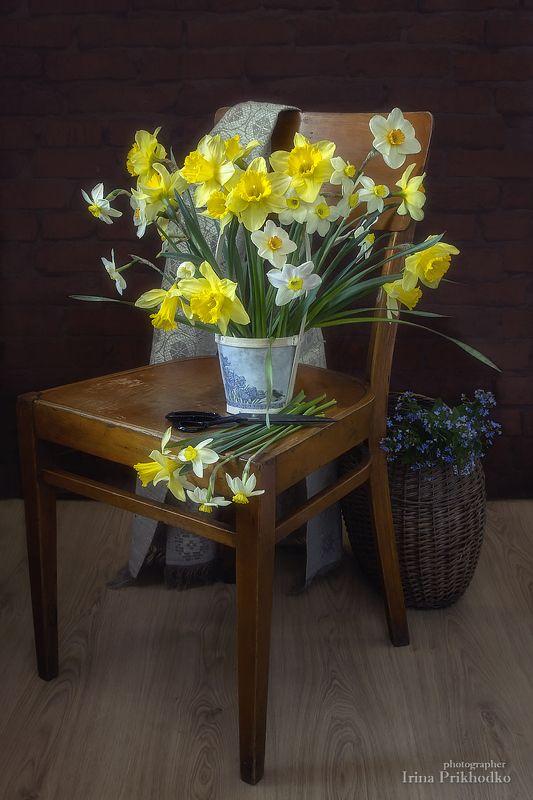 натюрморт, весна, настроение, цветы, нарциссы, незабудки, деревенский, винтажный, художественное фото Весна на дачеphoto preview