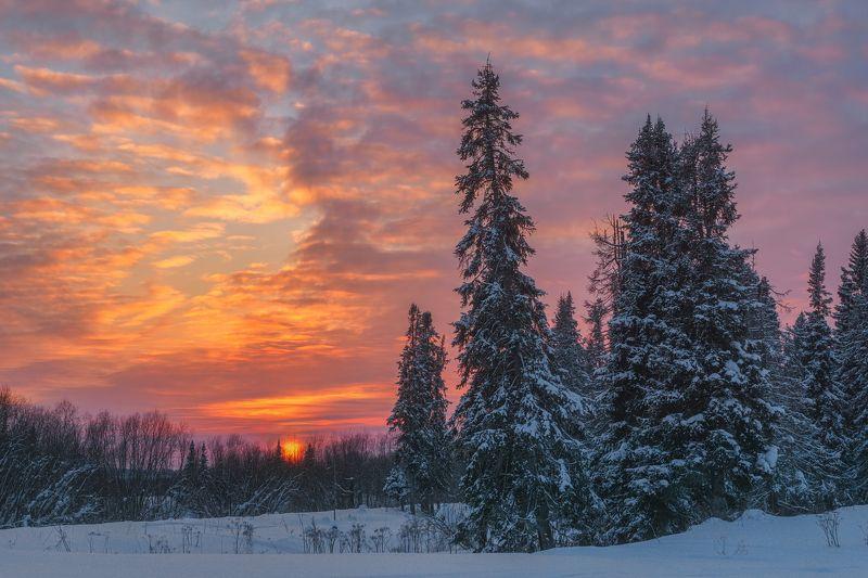 печора,коми,закат В свете уходящего дняphoto preview