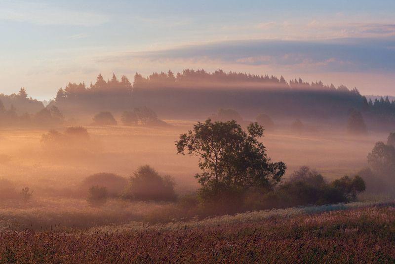 Фототуры с Владимиром Рябковым, #topnature #russpasibo #magic_shots #lovelyRussia #sunset_vision #exclusive_sky  #exclusive_shots #loves_russia2 #photoarena_nature #nature_sultans #nature_perfection #rsa_sky #rsa_sunset #photorussia #rsa_naturepics #sunse Бродят туманыphoto preview
