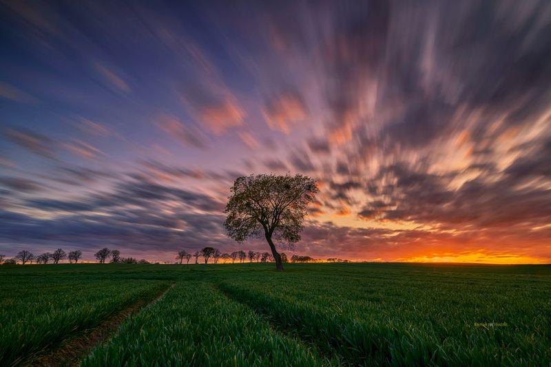 Kociewie, Poland, summer, landscape, sunset, clouds, fields, Kociewie фото превью