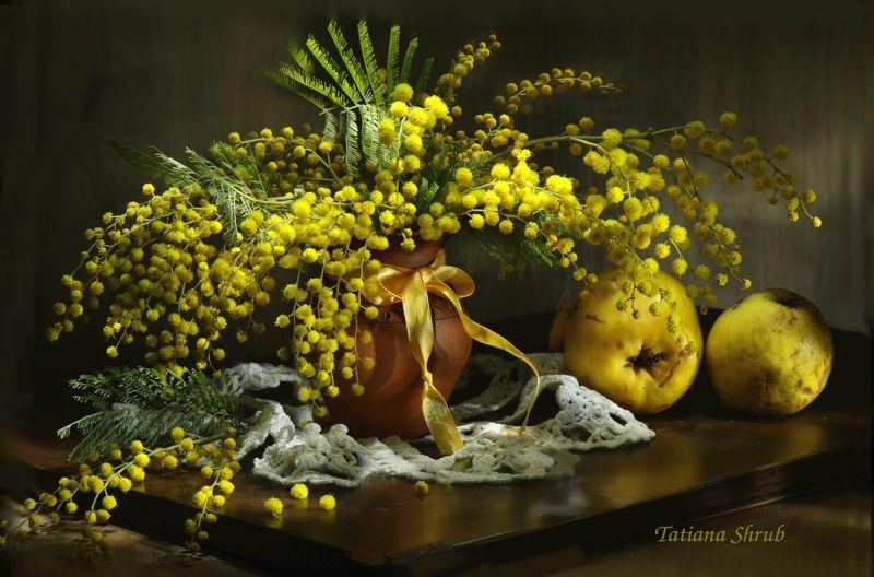 букет, цветы, мимоза, ваза С праздником весны!photo preview