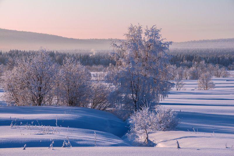 север, кольский, хибины, заполярье, Утро морозное с дымком.photo preview