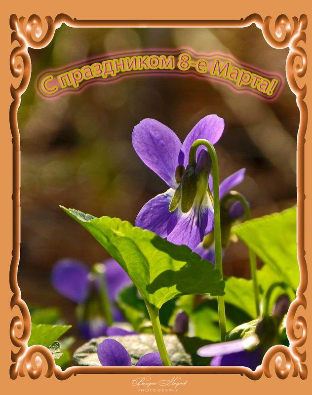 весна, март, праздник, открытка С праздником! фото превью