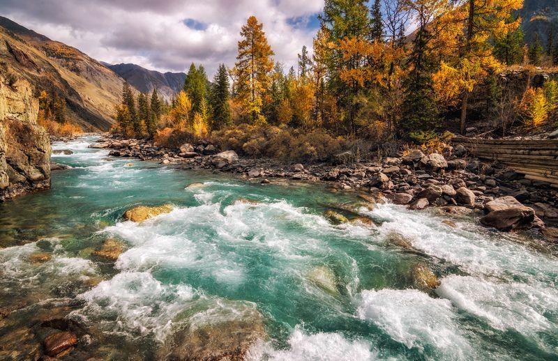 горный алтай,осень,река карагем Быстрое течение...photo preview